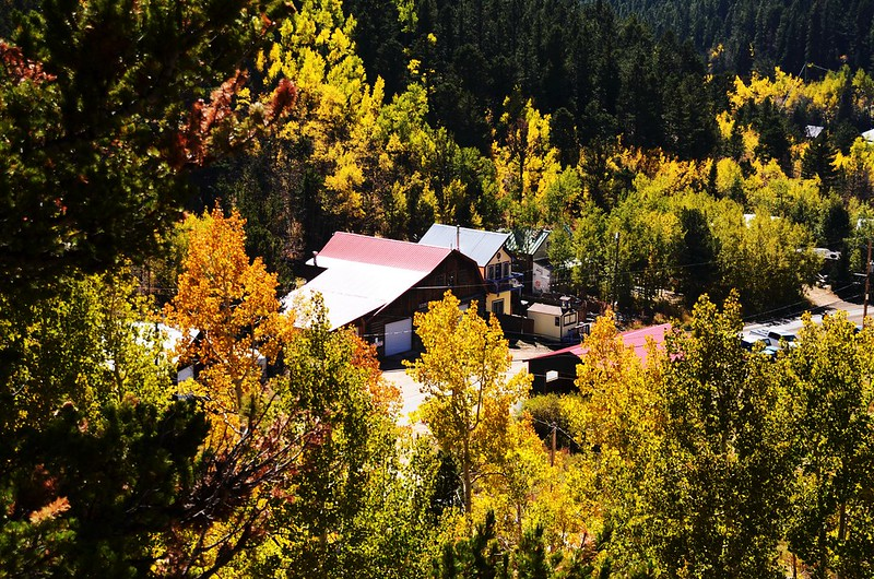 Fall Foliage in Peak to Peak Scenic Byway, Colorado (2)