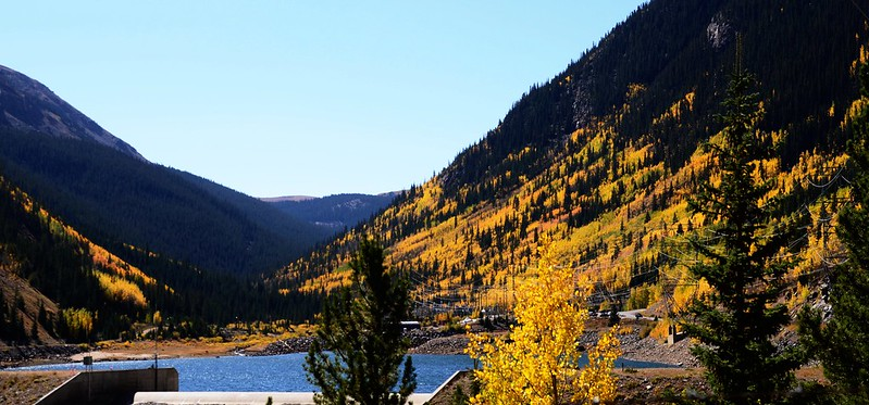 Fall Foliage in Kenosha Pass, Colorado (13)