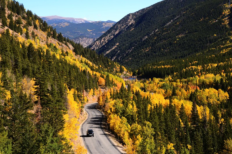 Fall Foliage in Kenosha Pass, Colorado (5)