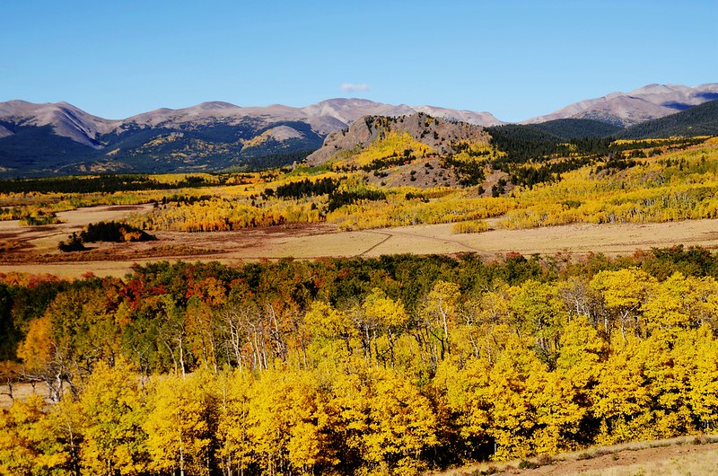 Fall foliage hike at Colorado Trail, Kenosha Pass  (54)