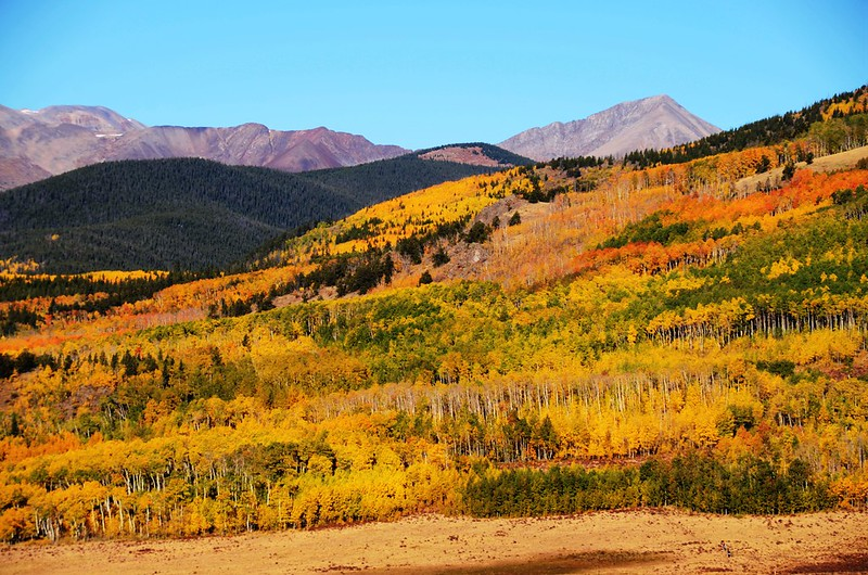 Fall foliage hike at Colorado Trail, Kenosha Pass  (52)