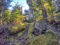 Musquodoboit Trailway - Gibraltar Rock Trail