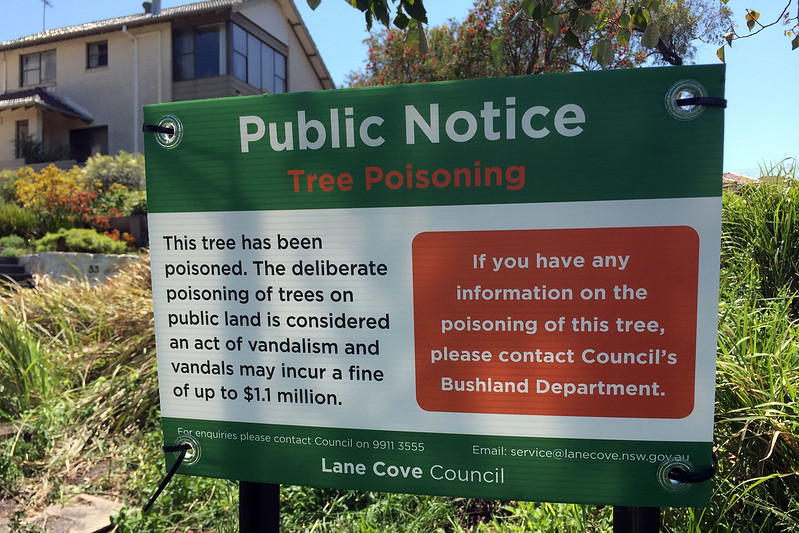 Illegal tree poisoning notice