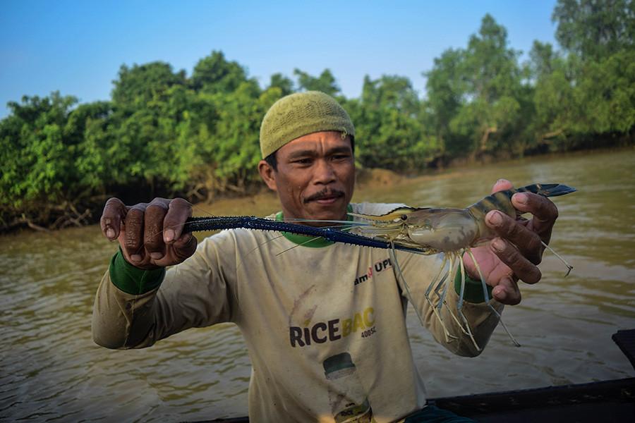Upang Ceria居民展示他在穆西河支流Demang Lebar Daun所捕獲的蝦子。地方上希望透過溪流之旅等活動,吸引觀光客造訪。照片來源:Nopri Ismi攝,Mongabay提供。