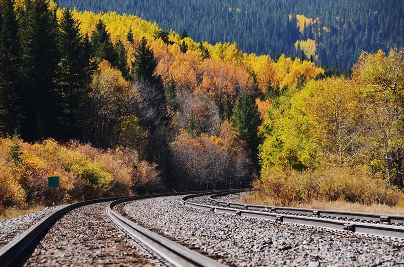 Fall Foliage in Rollins Pass, Colorado (4)