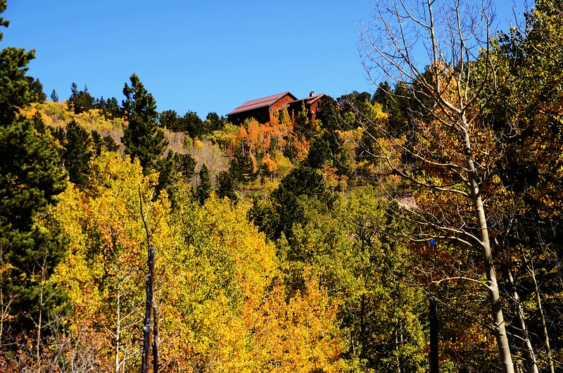 Fall Foliage in Peak to Peak Scenic Byway, Colorado (5)