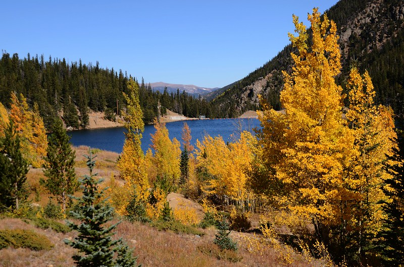 Fall Foliage in Kenosha Pass, Colorado (15)