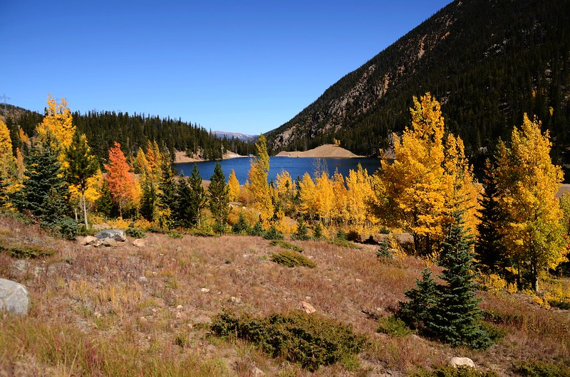 Fall Foliage in Kenosha Pass, Colorado (14)