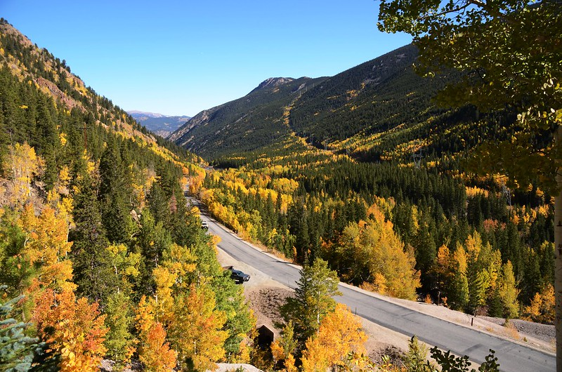 Fall Foliage in Kenosha Pass, Colorado (6)