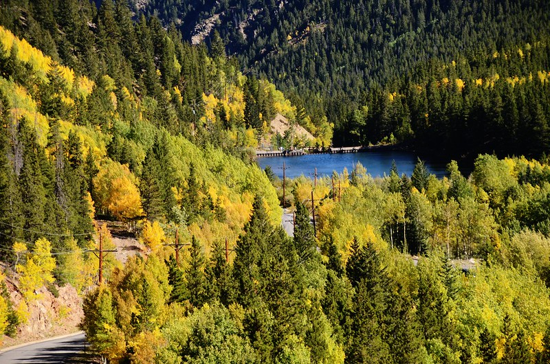 Fall Foliage in Kenosha Pass, Colorado (1)
