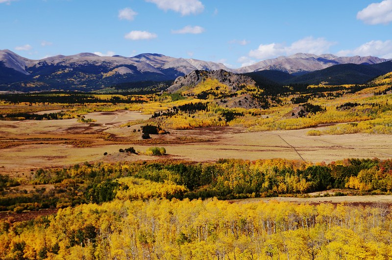 Fall foliage hike at Colorado Trail, Kenosha Pass  (194)