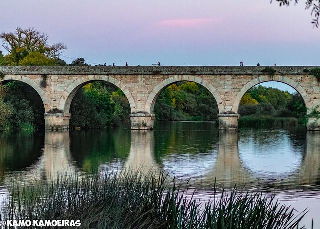 puente de Baños De Ledesma 2