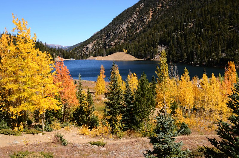 Fall Foliage in Kenosha Pass, Colorado (16)