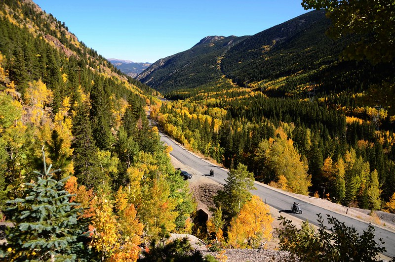 Fall Foliage in Kenosha Pass, Colorado (3)