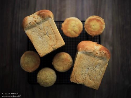 花茶酵母のパン 20190920-IMG_4666 (5)