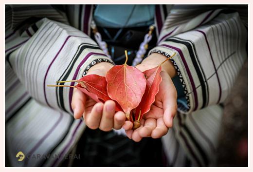 紅葉した葉っぱを持つ男の子 七五三