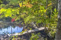 Hobson's Lake Hiking Trail