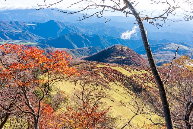 赤薙山直下の登りで笹の尾根を振り返る
