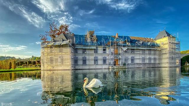 Swan Lake - 7598