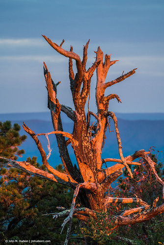 virginia 2019 botetourtcounty blueridgeparkway brp autumn nature outdoor outdoors nikond750 nikkor20050mm sky air grouped sunrise dawn mountains fx commented favorited