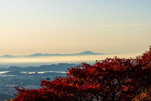ツツジの紅葉と筑波山
