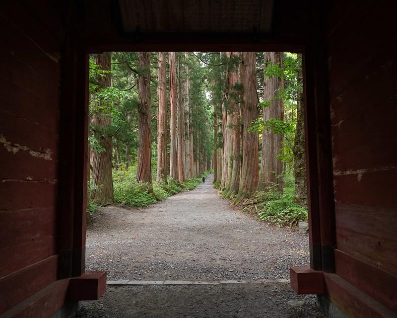 Zuishinmon Gate, entrance to the hall of Japanese cedars leading up to Oku-sha at Togakushi Shrine
