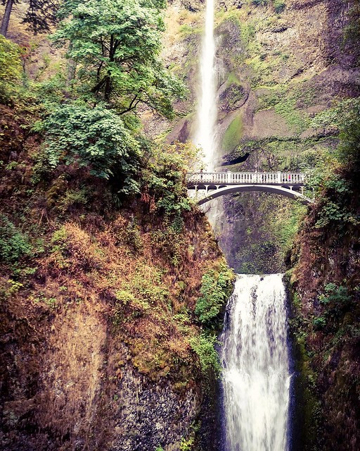 It's been over 4 years since I first visited @multnomahfalls @visitportlandoregon @visitoregonguide and I've wanted to make the 14 hour drive so many times since then. I feel like I've learned so much as a photographer and my @canonusa gear is so much bet