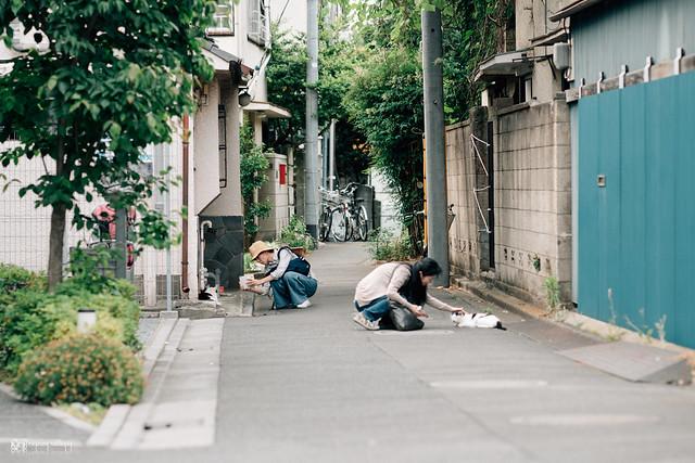 散步攝影 | 鄰鎮,說走就走 | 22