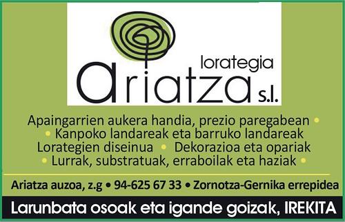 Ariatza