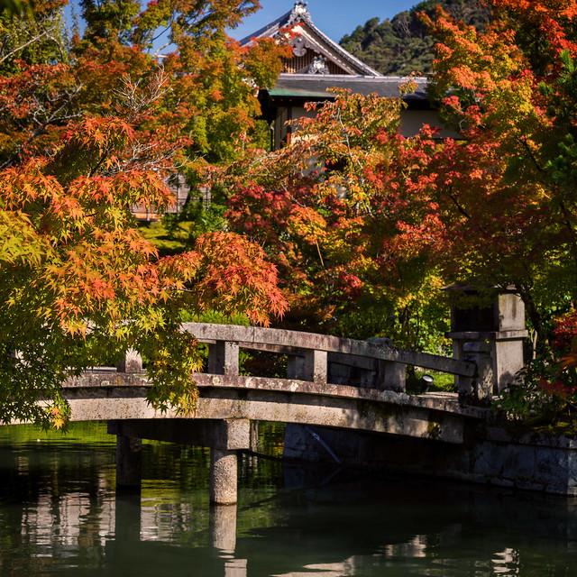The gardens of Eikando