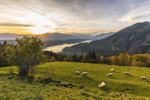 millstätter see lake sunset landscape spittal sheep mountains carinthia austria clouds autumn