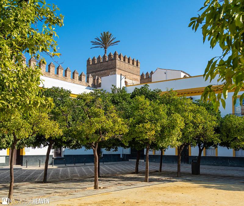 Spain - 0806