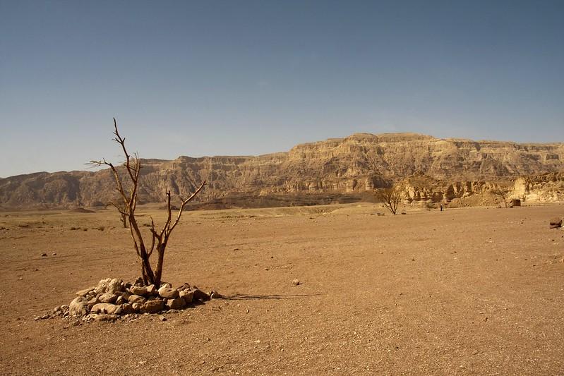 Wüste Negev I