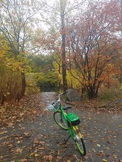 10-23-2019: Bike to the brook. Cambridge, MA