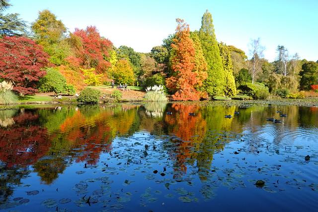 Reflections @ Sheffield Park