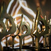 2019 Global SABRE Awards