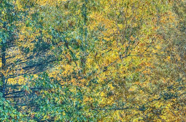 autumnal-1