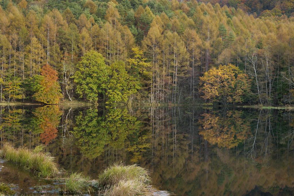 Mishaka Ike Pond in Autumn