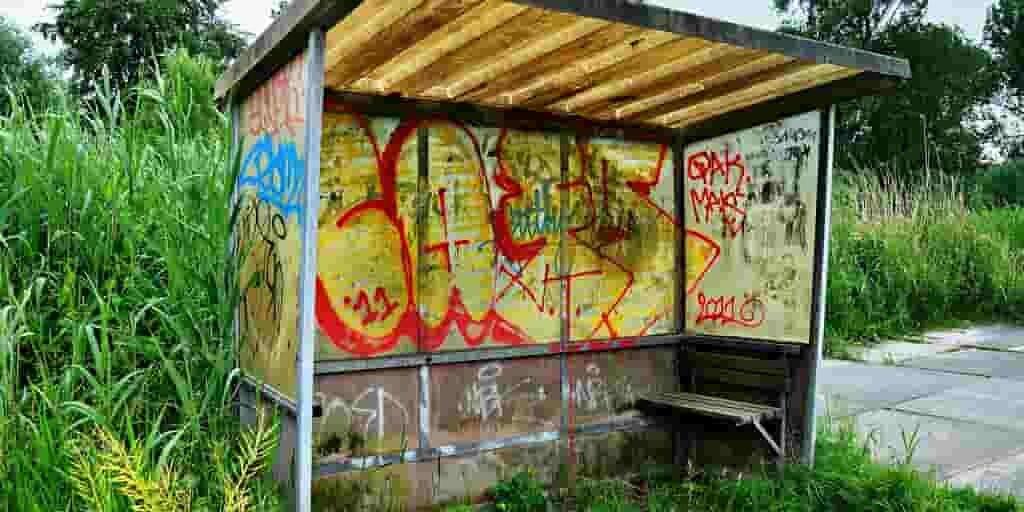 les-graffitis-des-abribus-aident-les-oiseaux-contre-les-collisions
