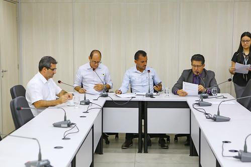 35ª Reunião Ordinária - Comissão de Desenvolvimento Econômico, Transporte e Sistema Viário