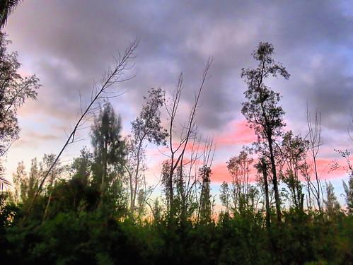 Burn area at sunrise 20191024