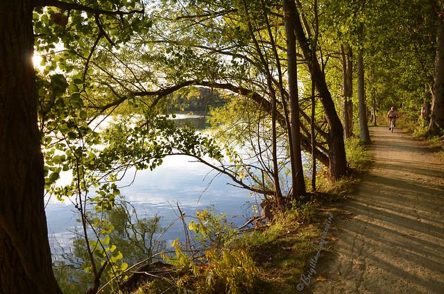 Sentier d'automne avant le coucher du soleil