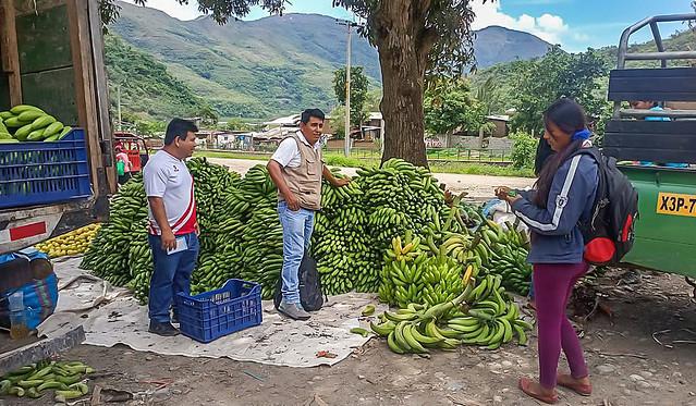 Productores agropecuarios y agroindustriales participaron en feria en Palma Real