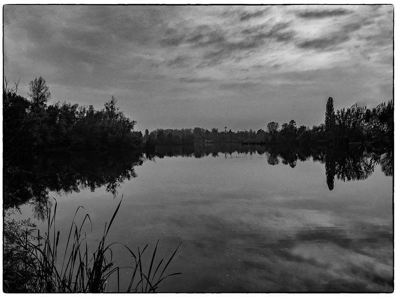 """Le soir sur l""""étang... 48954475192_3304097fe7_c"""