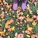 shoe per diem & #ootd october 2019 -