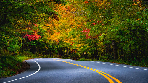 autumn foliage northamerica nature stowe traffic trees maple lamoillecounty smugglersnotch vermont city road travel plants fallcolours america landscape season unitedstates fall theunitedstatesofamerica us usa unitedstatesofamerica countryside countryroad