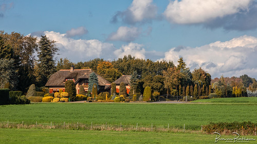 Autumn landscape (HFF)
