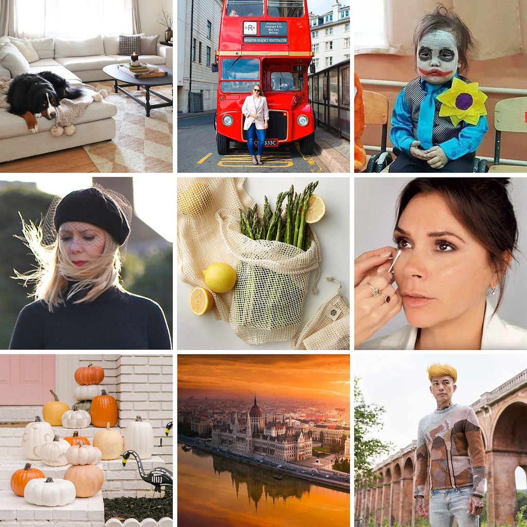 16 Unmissable Reads, the Best of the Blogosphere (October 2019) | Not Dressed As Lamb