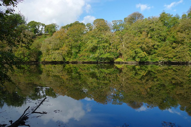 Autumn reflections in the Lerryn.....