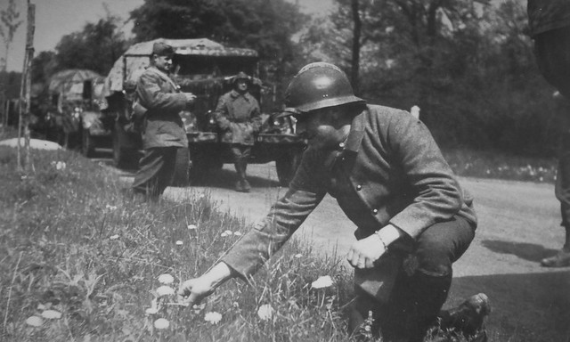 A French Army Lt picking flowers on the side of the road 1940.